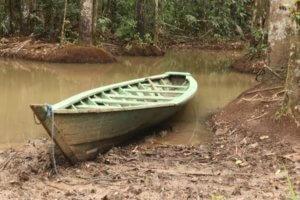 Puerto Maldonado – Amazon